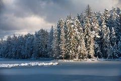 冰的湖和森林在冬天 免版税库存图片