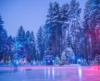 滑冰的溜冰场在森林 免版税库存图片