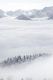 结冰的科罗拉多落矶下雪冬天风景 免版税库存照片