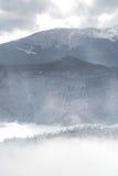 结冰的科罗拉多落矶下雪冬天风景 库存照片