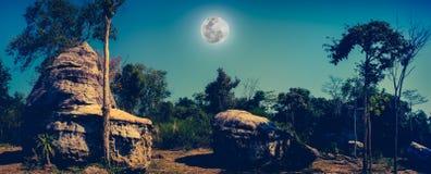 冰砾全景反对美丽的天空和满月的在tr 库存图片