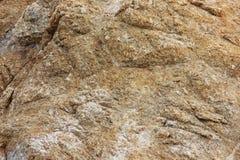 冰砾和岩石在鸟岸晃动, Pebble海滩, 17英里驱动,加利福尼亚,美国 免版税库存图片