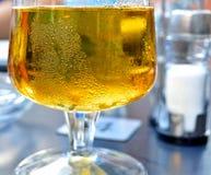 冰镇啤酒在夏日 免版税库存图片