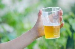冰镇啤酒在热的夏日 免版税库存照片