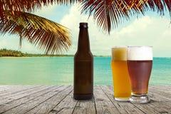 冰镇啤酒 免版税库存照片