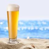 冰镇啤酒botle照片在沙子的 库存照片
