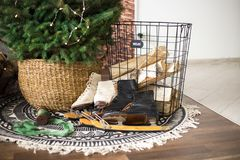 冰鞋在树下 圣诞节礼品新年度 免版税库存图片