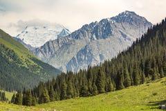 冰高峰Palatka 图库摄影