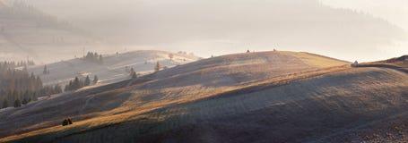冰,结霜在山的五颜六色的秋天草甸 晴朗的秋天 库存照片