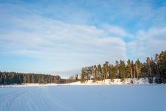 滑冰从冬天山在旅馆Sosnovy博尔里 免版税库存照片