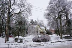 冰暴- 2013年12月22日南安大略 库存图片