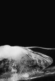 冰黑白色摄影片断构造了表面 在黑暗的背景的美好的抽象结冰的冰柱 宏观看法 免版税库存图片