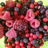 冰冻的果子混合物 库存图片
