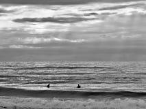 冲浪与朋友 免版税库存照片