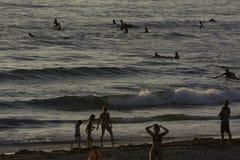 冲浪在和平的海滩在圣地亚哥,加州 库存图片