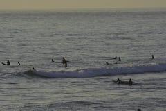 冲浪在和平的海滩在圣地亚哥,加州 免版税库存图片