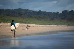 冲浪在哥斯达黎加 免版税库存照片