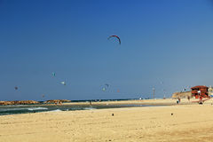 冲浪在地中海的风筝在以色列 免版税库存图片