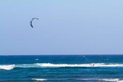 冲浪在夏威夷的风筝 库存图片