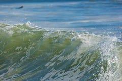 冲浪在成交新泽西 库存图片