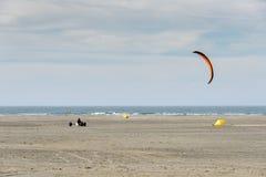 冲浪在海滩的风筝 免版税库存照片