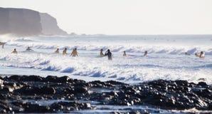 冲浪在El Cotillo的冲浪者靠岸,费埃特文图拉岛,加那利群岛,西班牙 免版税库存图片