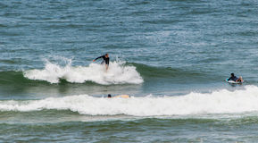 冲浪在mundaka,西班牙 免版税库存图片