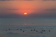 冲浪的冲浪者日出 免版税库存图片