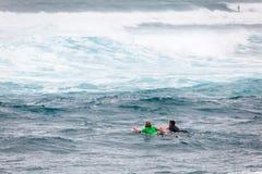 冲浪的用浆划在日落海滩夏威夷 库存图片