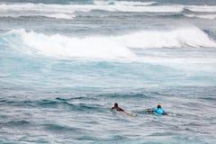 冲浪的用浆划在日落海滩夏威夷 免版税库存照片