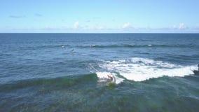 冲浪者乘与一口,费埃特文图拉岛的波浪 股票视频