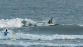 冲浪者乘驾由防堤的波浪和人游泳 股票录像