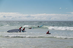 冲浪者在冲浪者天堂的水中在英属黄金海岸 免版税库存图片