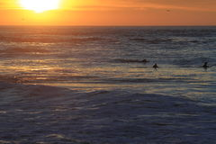 冲浪者在旧金山登陆末端 库存图片