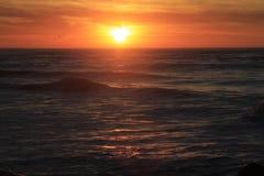 冲浪者在旧金山登陆末端 免版税库存照片