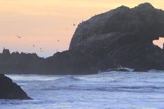 冲浪者在旧金山登陆末端 图库摄影