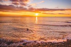 冲浪者在明亮的温暖的日落或日出的海洋 冲浪在海洋 库存照片