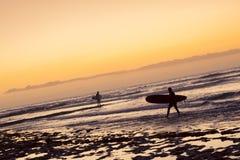 冲浪者在波浪,在海岸的明亮的日落,特内里费岛冲浪, 免版税库存照片