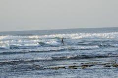 冲浪者在费埃特文图拉岛 图库摄影