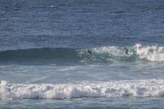 冲浪者在费埃特文图拉岛 免版税图库摄影