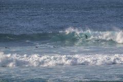 冲浪者在费埃特文图拉岛 库存照片