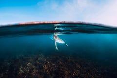 冲浪者妇女放松和坐在冲浪板 在蓝色海洋冲浪女孩 库存图片