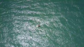 冲浪者小形象在起波纹的海浪航行 股票录像