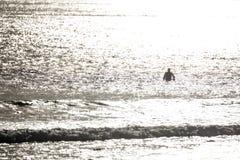 冲浪者现出轮廓 免版税库存图片