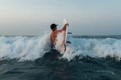 冲浪者进入有一个委员会的海洋横跨波浪, 免版税库存图片