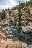 冲的小河河水通过十一英里峡谷科罗拉多 免版税图库摄影