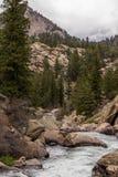 冲的小河河水通过十一英里峡谷科罗拉多 免版税库存照片