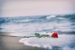 冲走从海滩的波浪一朵红色玫瑰 葡萄酒 爱 免版税库存照片