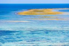 冲绳岛日本珊瑚海  免版税库存照片