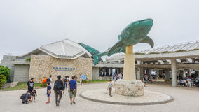 冲绳岛,日本- 2017年4月20日:冲绳岛Churaumi水族馆,隐岐 免版税库存照片